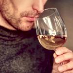 Pack Dégustation dans les domaines et musée des vins (deux dégustations par pers. + entrée au musée)